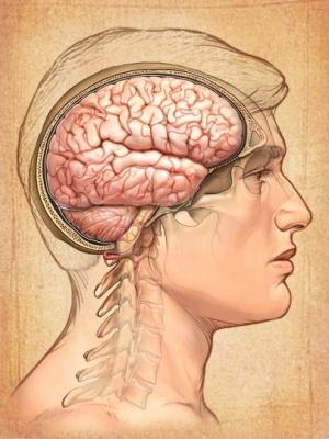 когнитивно бихевиоральная терапия обучение: