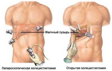 Поликлиника 24 детская василеостровского района спб