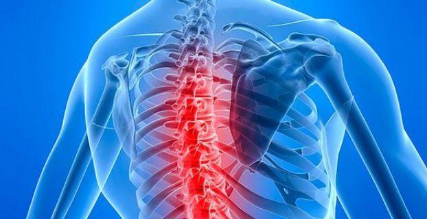 A gerincvelő betegségei