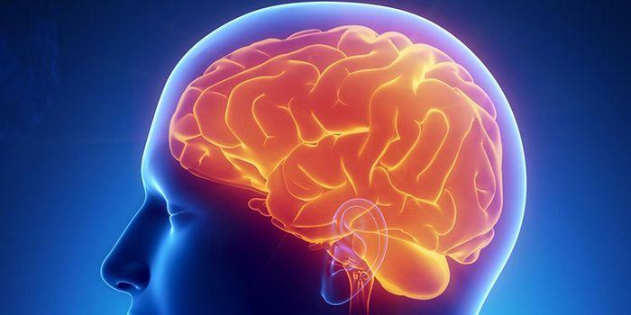 腦膜炎是一種疾病的治療。 症狀和預防腦膜炎