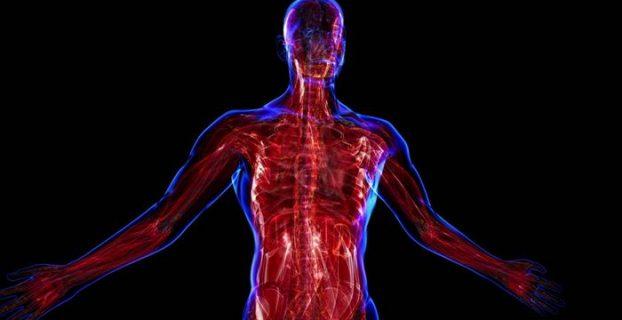 Myopathia - milyen betegség okoz? A myopathia leírása, tünetei és megelőzése
